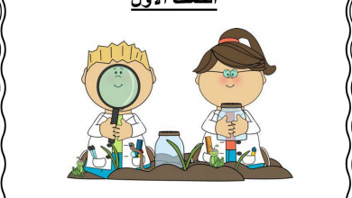 Photo of صف أول علوم مراجعة الفصل الأول