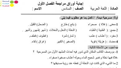 Photo of صف سادس لغة عربية مراجعة  محلولة  فصل أول