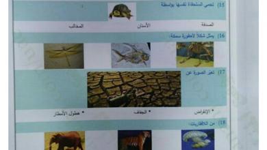 Photo of صف ثاني امتحان علوم نهاية الفصل الأول 2017