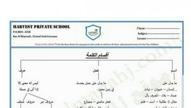 Photo of ورقة عمل أقسام الكلمة لغة عربية صف رابع فصل أول