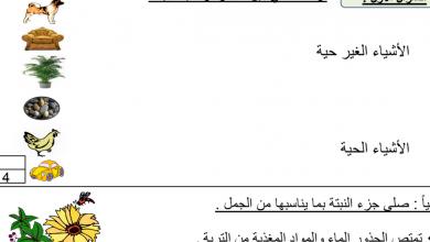 Photo of أول علوم التقويم الأول