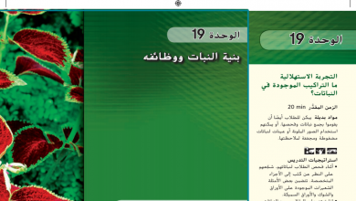 Photo of عاشر أحياء دليل المعلم بنية النباتات