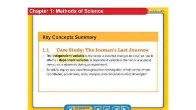 Photo of ملخص شامل علوم منهج إنجليزي صف سادس فصل أول
