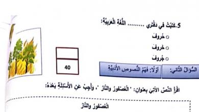 Photo of ثاني لغة عربية امتحان نهاية الفصل الأول 2017