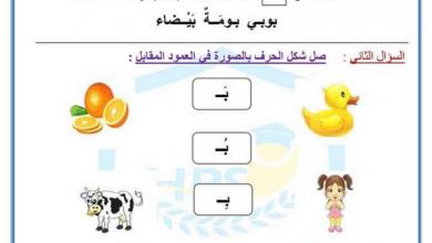 Photo of ورق عمل الألف والباء لغة عربية صف أول فصل أول