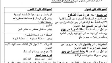 Photo of ثاني علوم ملخص دور حياة الحيوان