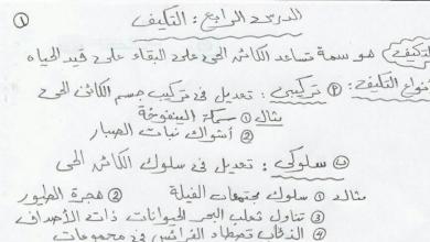 Photo of نلخيص الدرس الرابع التكيف علوم صف رابع فصل أول