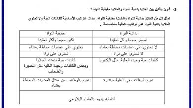 Photo of أسئلة مقالية تركيب الخلية ووظائفها أحياء صف تاسع متقدم فصل أول