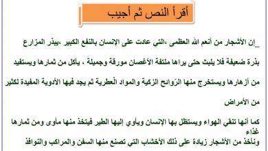 Photo of ملزمة مراجعة لغة عربية صف ثالث فصل أول
