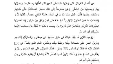 Photo of أوراق عمل درس العطف على الأبناء لغة عربية صف سابع فصل أول