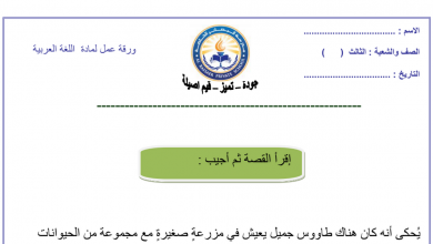 Photo of ورق عمل لغة عربية فهم المقروء صف ثالث فصل أول