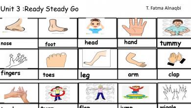 Photo of مفردات الوحدة الثالثة لغة إنجليزية صف ثالث فصل أول