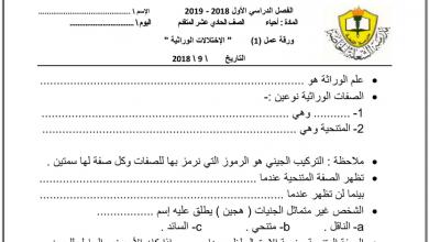 Photo of ورقة عمل الاختلالات الوراثية أحياء صف حادي عشر متقدم فصل أول