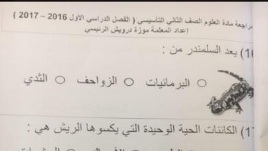 Photo of اوراق مراجعة وملخصات علوم للصف الثاني الفصل الاول