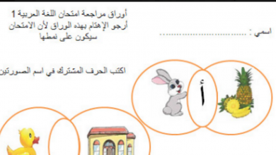 Photo of أوراق مراجعة  لامتحان لغة عربية الصف الاول الفصل الاول