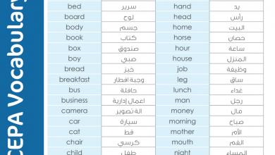 Photo of مصطلحات ومفردات الكتاب لغة إنجليزية صف ثاني عشر فصل أول