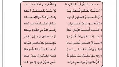 Photo of تدريب على صحب الناس قبلنا لغة عربية صف ثاني عشر
