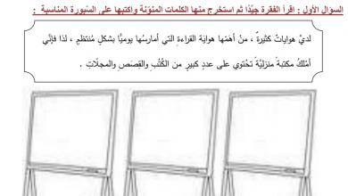 Photo of ورقة عمل التنوين لغة عربية صف ثاني فصل أول