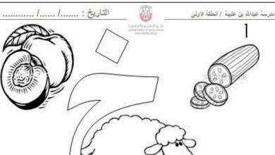 Photo of أوراق عمل حرف الخاء لغة عربية الصف الاول الفصل الاول