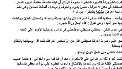 Photo of تلخيص درس ورقة الحياة لغة عربية صف خامس فصل أول