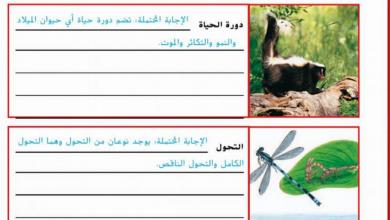 Photo of حل أسئلة الدرس الثاني الوحدة الثالثة علوم صف رابع فصل أول