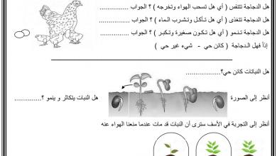 Photo of ورقة عمل درس الكائنات الحية وغير الحية علوم صف رابع فصل أول