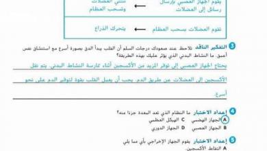 Photo of حل أسئلة الدرس الأول في الوحدة الثالثة علوم صف سادس فصل أول