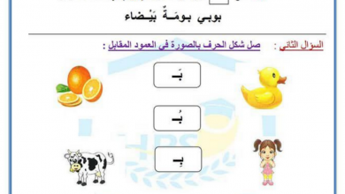 Photo of مراجعة حرفي الالف والباء لغة عربية للصف الاول الفصل الاول