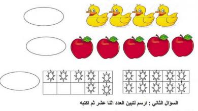 Photo of اختبار تدريبي رياضيات صف أول فصل أول