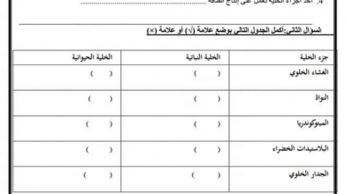 Photo of اوراق عمل الخلية علوم صف رابع فصل أول
