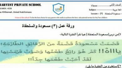 Photo of ورقة عمل مسعودة والسلحفاة لغة عربية للصف الثاني الفصل الاول