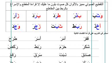 Photo of خطة علاجية في اللغة العربية للصفوف الأولية