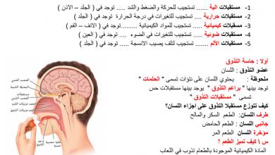 Photo of ملخص درس الحواس أحياء فصل أول صف ثاني عشر عام