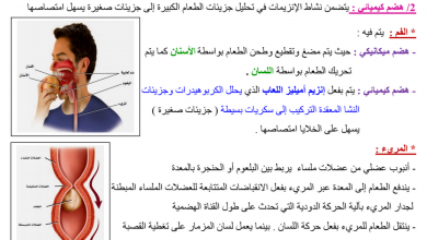 Photo of ملخص الوحدة الأولى الجهاز الهضمي والغدد الصم أحياء فصل أول صف ثاني عشر عام