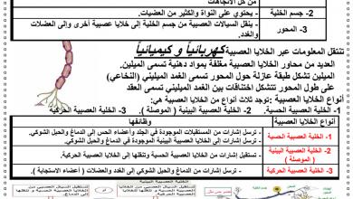 Photo of تلخيص الوحدة الثانية الجهاز العصبي أحياء فصل أول صف ثاني عشر عام