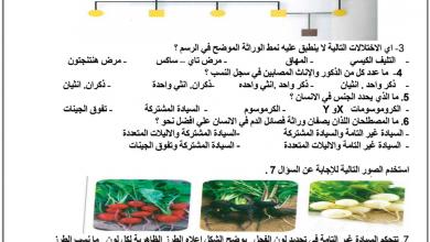 Photo of تدريبات وحدة الوراثة أحياء فصل أول صف ثاني عشر عام ومتقدم