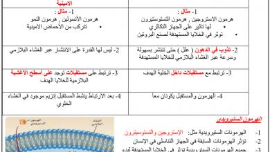 Photo of تلخيص الغدد الصماء أحياء فصل أول صف ثاني عشر عام
