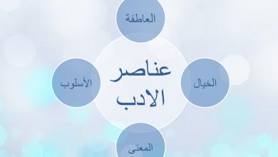Photo of عناصر الأدب لغة عربية فصل أول صف عاشر