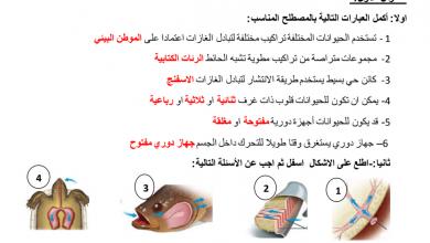 Photo of مراجعة درس الدورة الدموية وتبادل الغازات مع الإجابات علوم صف ثامن