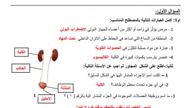Photo of مراجعة درس الجهاز الإخراجي مع الإجابات علوم صف ثامن