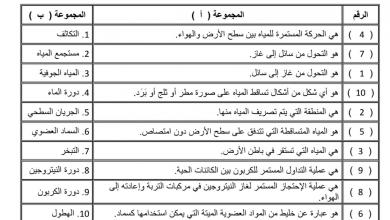 Photo of تلخيص الدرس الثالث الدورات في النظم البيئية علوم فصل أول صف خامس