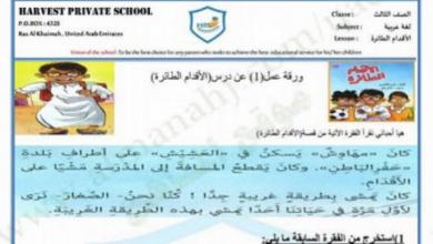 Photo of أوراق عمل حول مهارات اللغة العربية الفصل الأول الصف الثالث