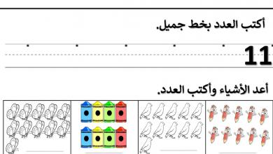 Photo of ملزمة رياضيات فصل أول للصف الأول