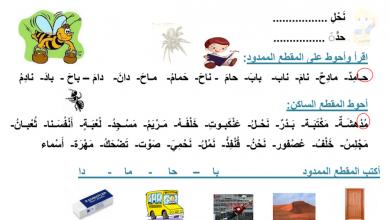 Photo of أوراق عمل اللغة العربية للصف الأول فصل ثالث