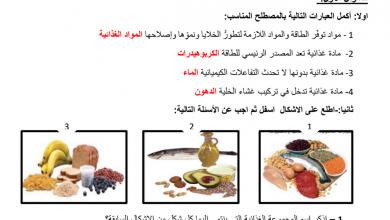 Photo of مراجعة درس التغذية علوم صف ثامن
