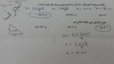 Photo of أوراق عمل رياضيات للفصل الثالث الصف السادس