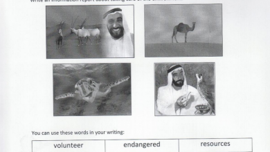 Photo of أوراق عمل لغة انكليزية للصف السابع