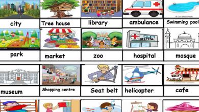 Photo of مفردات الوحدة التاسعة لغة انكليزية صف ثالث فصل ثالث