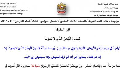 Photo of مراجعة الفصل الثالث لغة عربية للصف الثالث