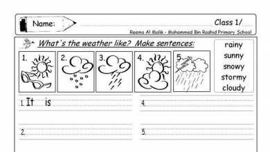 Photo of أوراق عمل متنوعة لغة انكليزية الفصل الثالث الصف الأول